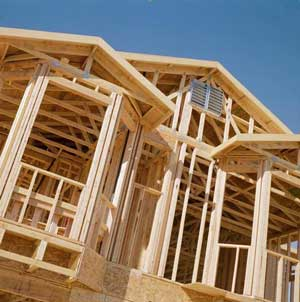 case-din-lemn